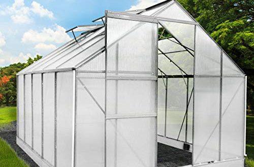BRAST Gewächshaus Aluminium mit Stahlfundament L310xB250xH205 6mm Platten viele zusätzliche Streben 11,6m³ Alu Gartenhaus